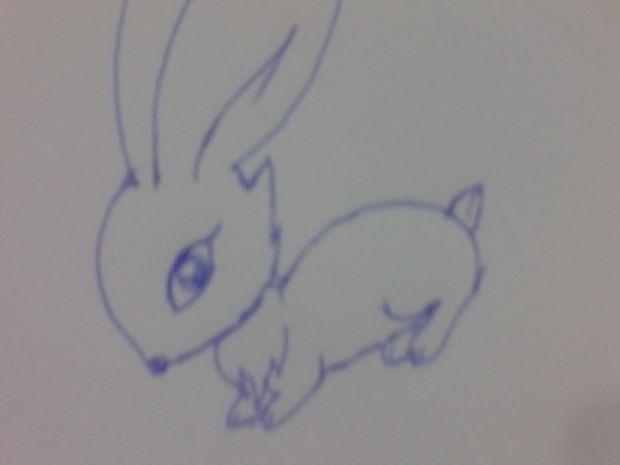 少儿简笔画兔子的画法