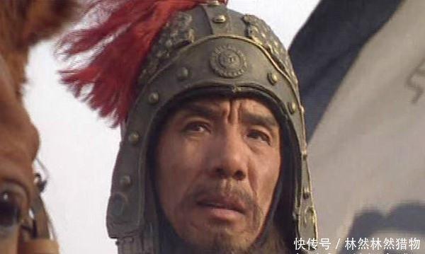 马懿给了一颗钉子,王凌就自尽而亡,这则成语故