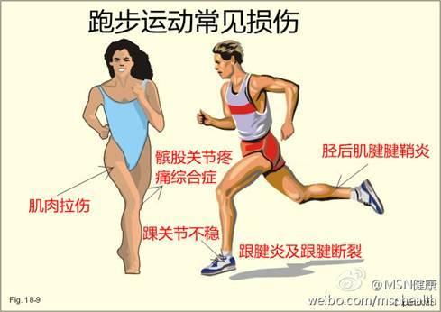 脚部位名称图解 关节