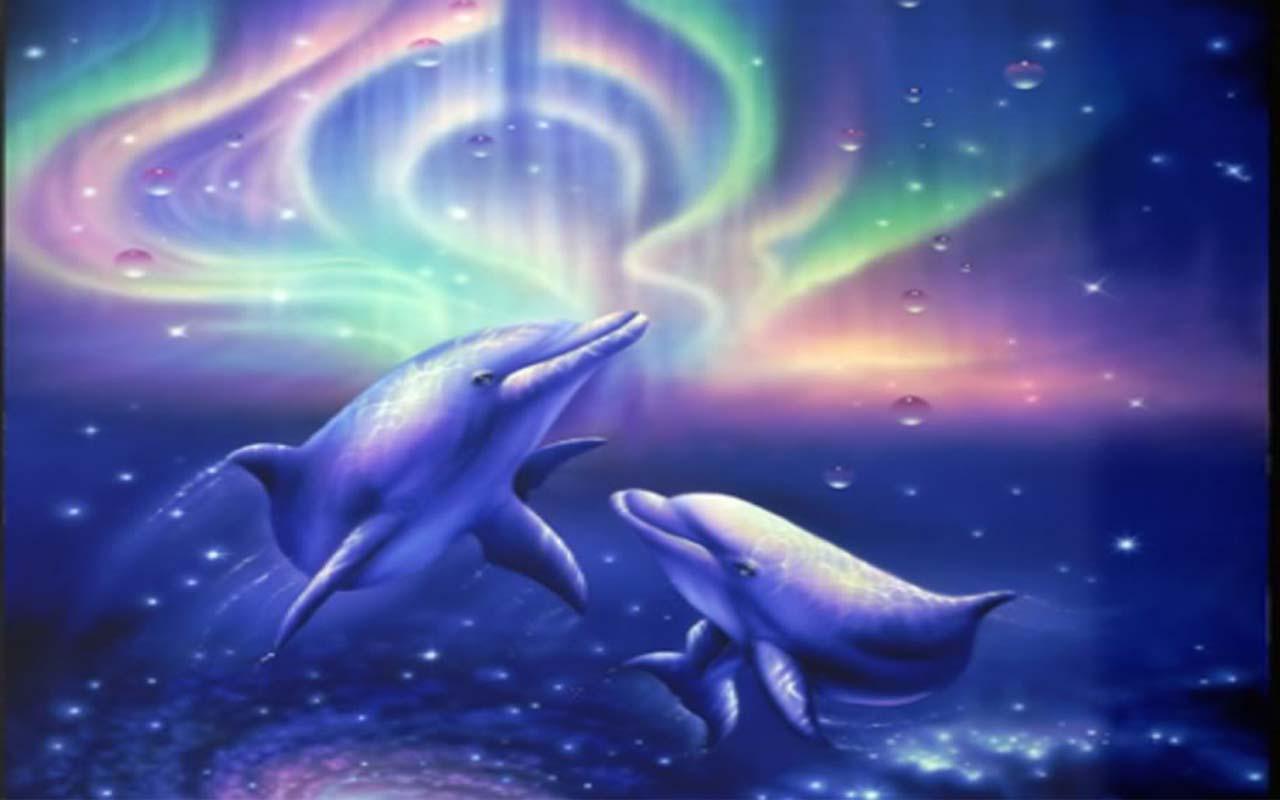 卡通海豚图片大全
