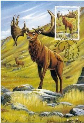 估计雄鹿会先从其骨骼上提供这些物质,再从食物上补足或是从遗弃的