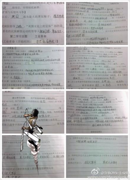 tfboys王俊凯 中考 网友留言复习资料