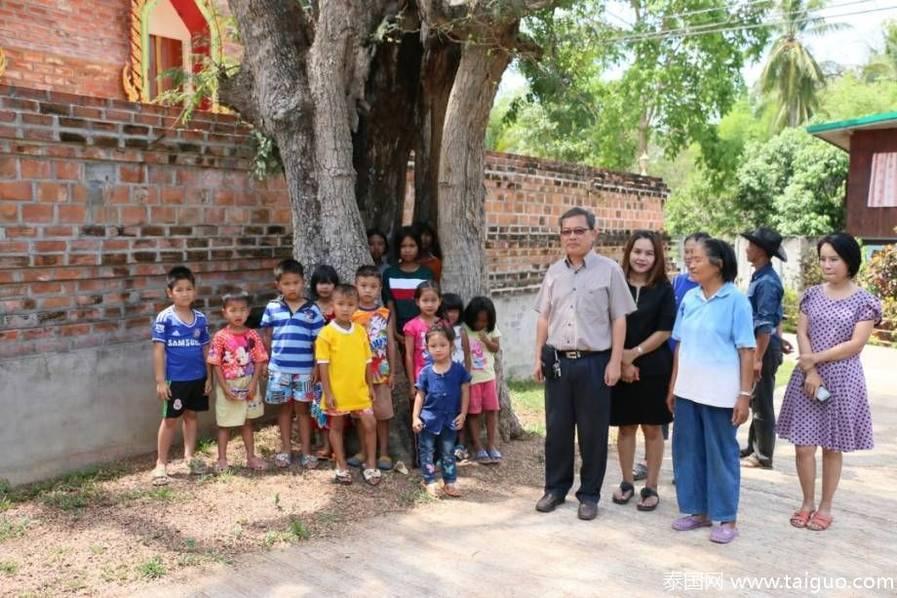 400年老树树洞可容纳14个儿童 - 钟儿丫 - 响铃垭人