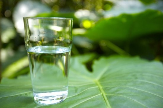 十个夺命的喝水坏习惯 你占了几样? - 白兔 - 兔兔乐园 欢迎光顾