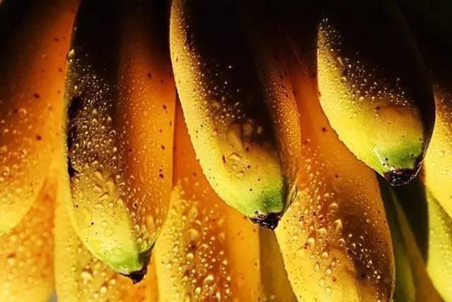 [转载]把香蕉放在大米里,结果惊呆了! - 烟圈 - 烟圈的博客