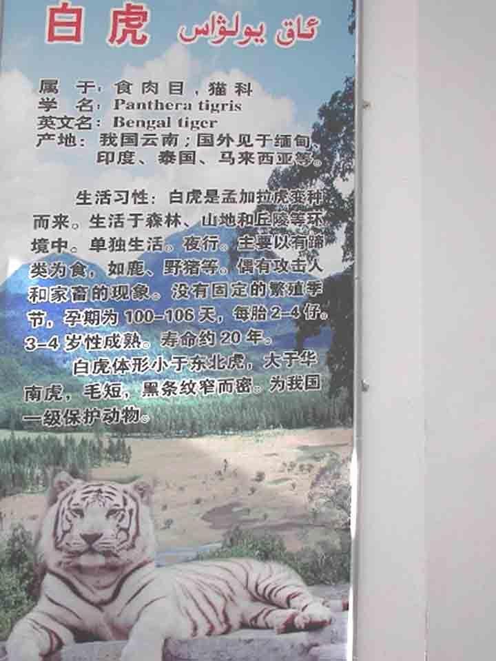 新疆天山野生动物园