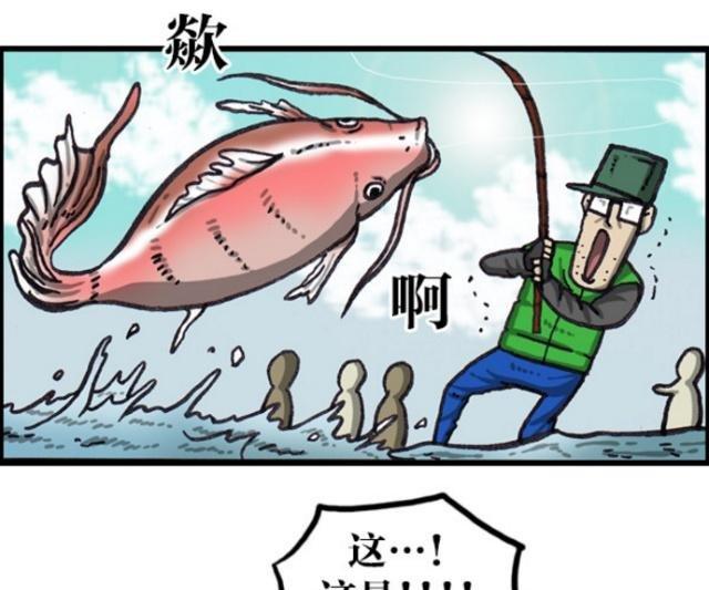 漫画家皇帝比机器鲤鱼更珍贵的高科技日记鱼房屋租赁漫画图片