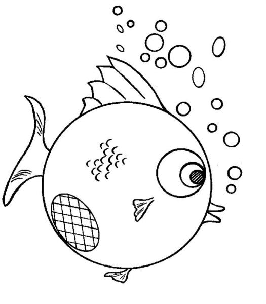 以下是几种热带鱼的简笔画图片,可以依葫芦画瓢