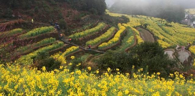 一首赞美婺源的诗句开篇,今天主角之一婺源,中国最美乡村.