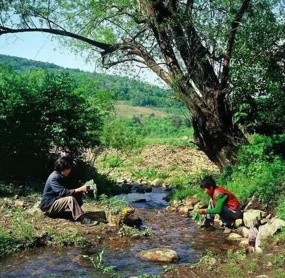 一组30年前的农村老照片!满满的回忆啊… -  - 真光 的博客