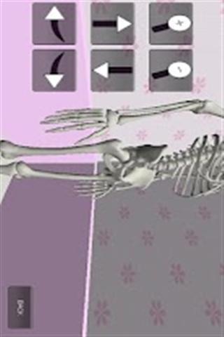 3d人体骨骼下载_v1.0_安卓手机版apk-优亿市场
