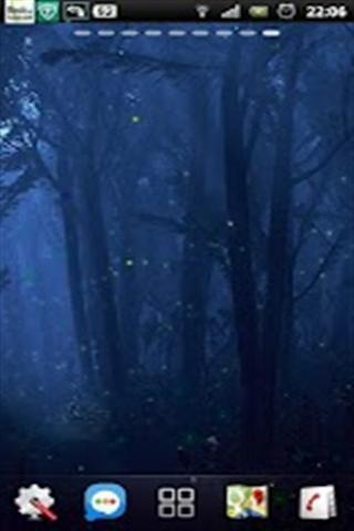 萤火虫森林之夜